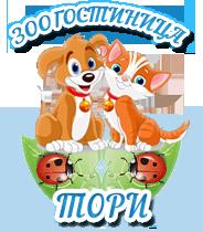 Гостиница для кошек и собак в СПб ТОРИ
