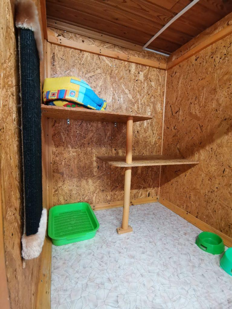 Зоогостиница Тори Номер  для кошек Бюджет